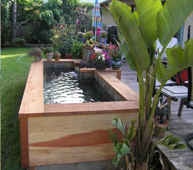 Jasa Dekorasi Pembuatan Kolam Ikan Murah Bandung