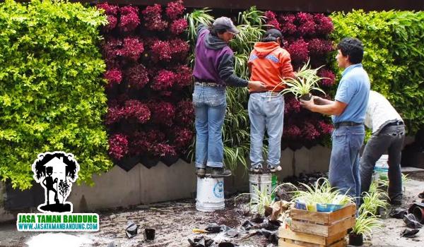 Tukang Pembuatan Taman Vertikal di Lembang Bandung